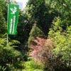 Arboretum Trompenburg Rotterdam