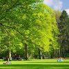 Philips de Jongh Wandelpark