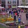 Bloemetjesmarkt Leeuwarden