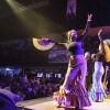 Concerten Paard van Troje Den Haag