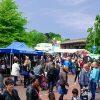 Paasmarkt Panningen