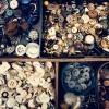 Snuffelmarkt in de Brabanthallen in Den Bosch